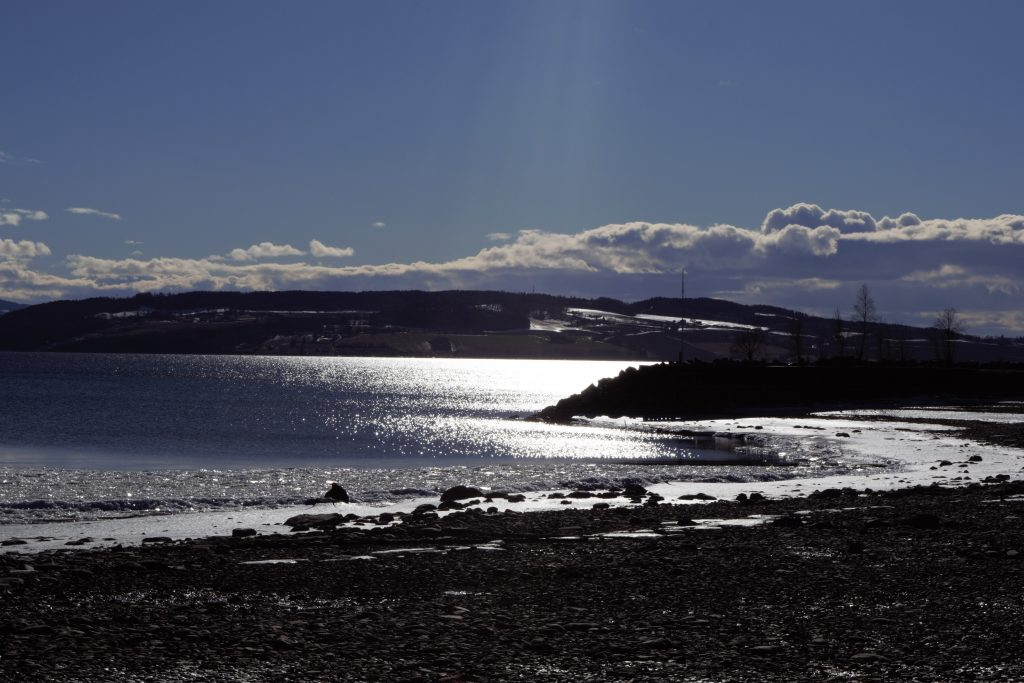 End of winter insight along the beach of Mjøsa